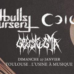 PITBULLS IN THE NURSERY + CEILD + GEOSTYGMA @ L'Usine A Musique